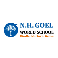 N H Goel World School, Raipur